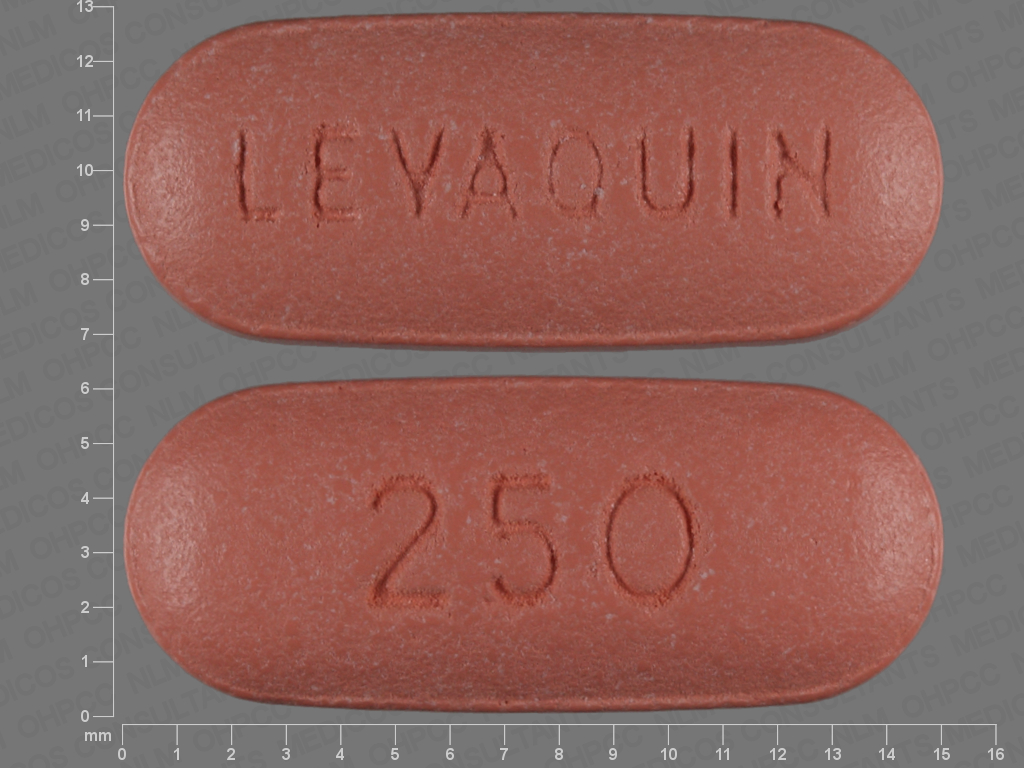 undefined undefined undefined levofloxacin 250 MG Oral Tablet [Levaquin]