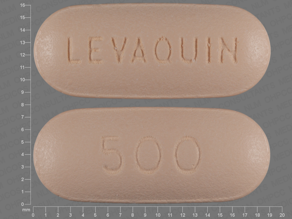 undefined undefined undefined levofloxacin 500 MG Oral Tablet [Levaquin]